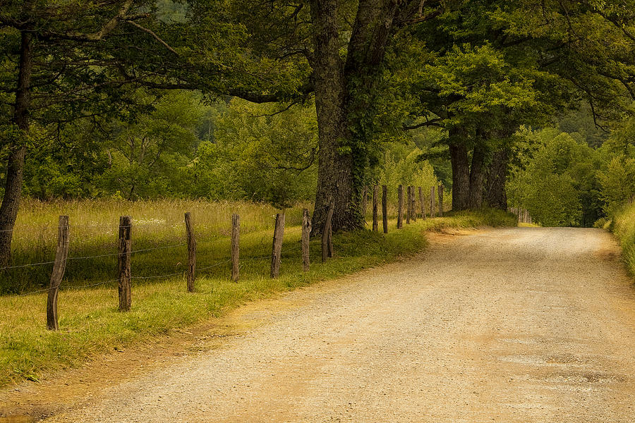 Cades Cove Photograph - Road In The Smokies by Andrew Soundarajan
