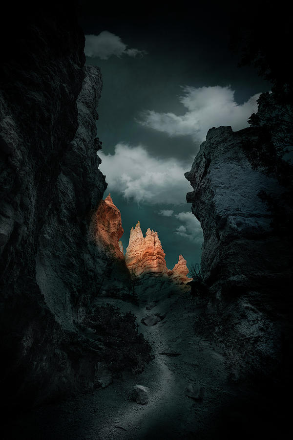 Peak Photograph - Road by Louise Yu