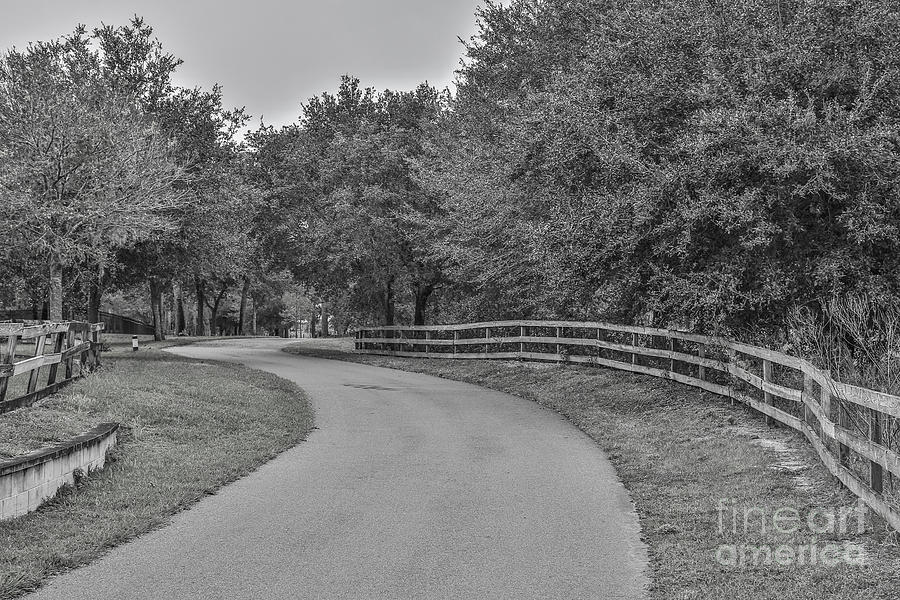 Black And White Photograph - Road Path by Mina Isaac