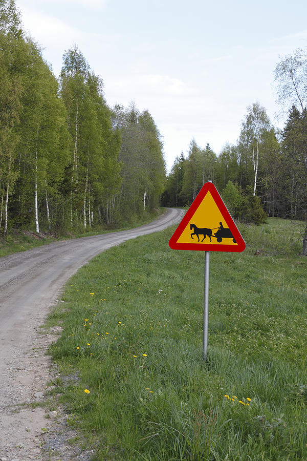 Nature Photograph - Road Sign With Carriage by Ulrich Kunst And Bettina Scheidulin