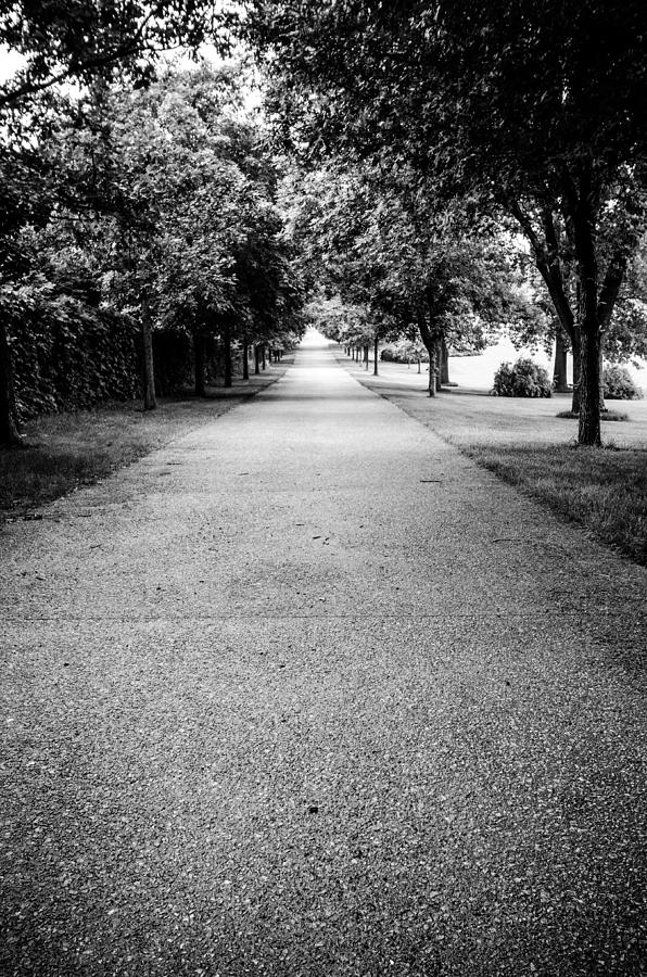 Road To Brucemore Mansion In Black And White Photograph