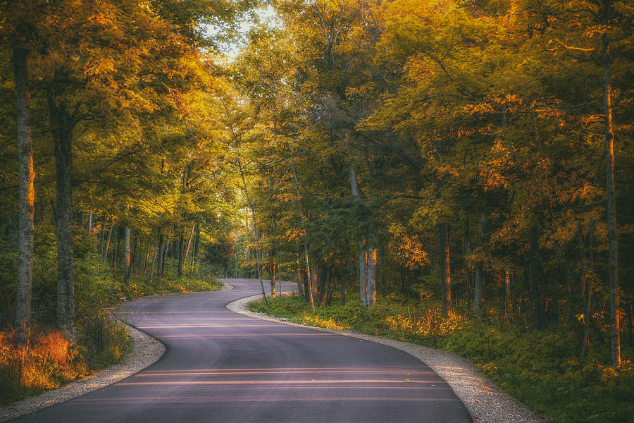 Blacktop Photograph - Road to Cave Point by Scott Norris