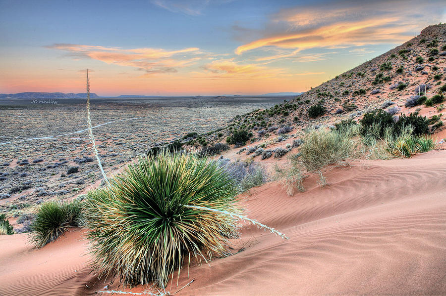 El Paso Photograph - Road To Mexico by JC Findley