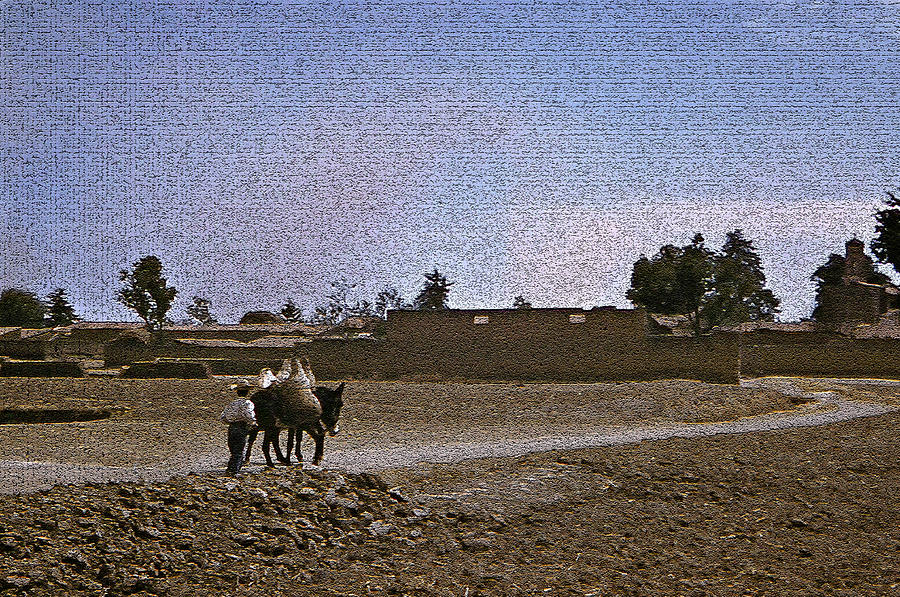 Landscape Photograph - Road Too Mexico by Michael Faryma