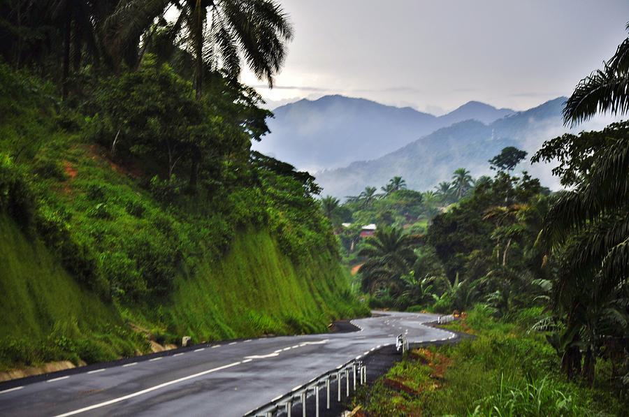 Jungle Photograph - Roads by Manu G