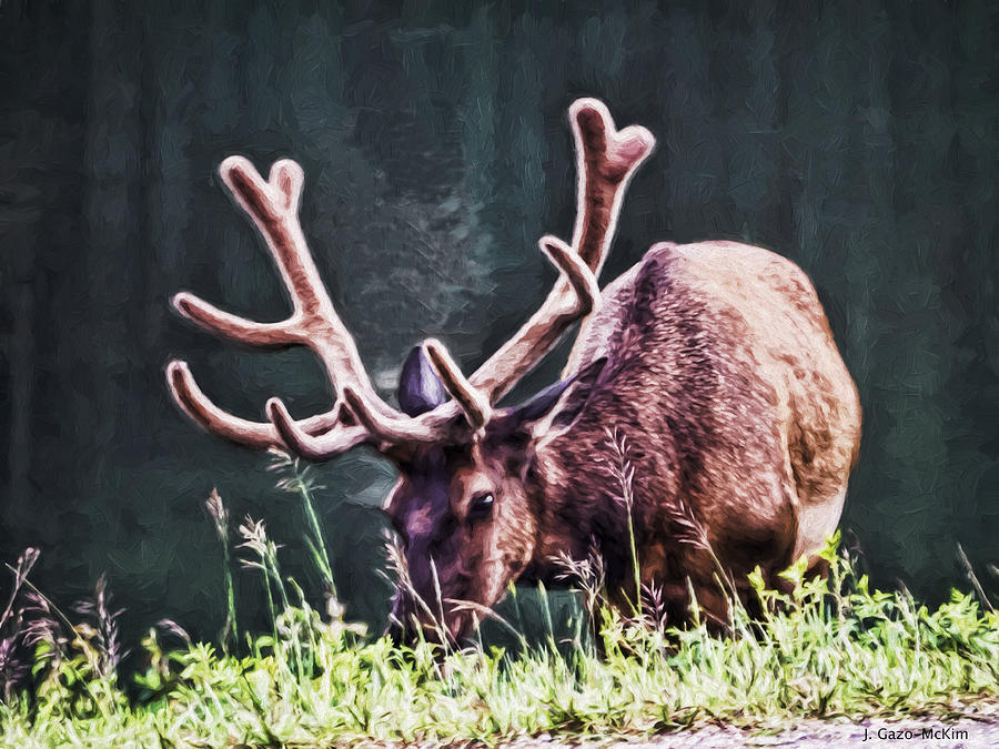 Elk Photograph - Roadside Picnic by Jo-Anne Gazo-McKim