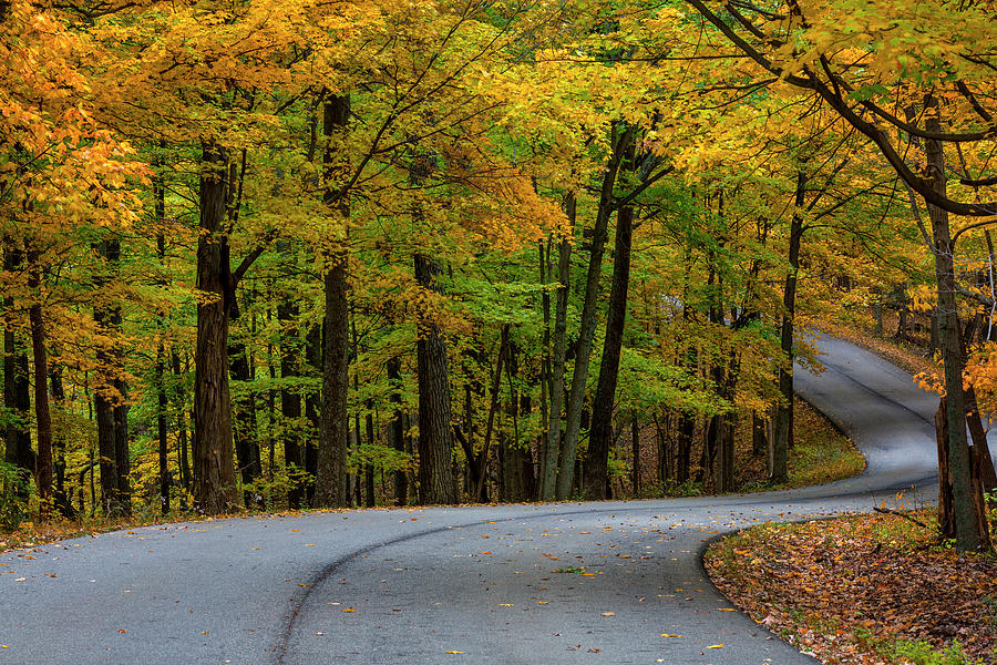 Autumn Photograph - Roadway In Autumn In Brown County State by Chuck Haney