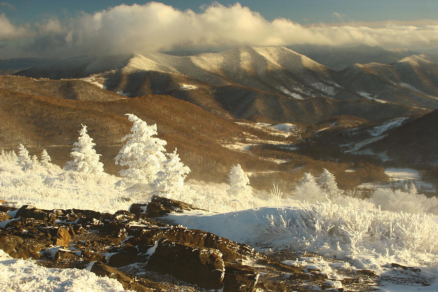 Roan Photograph - Roan Highlands by Adam Paashaus