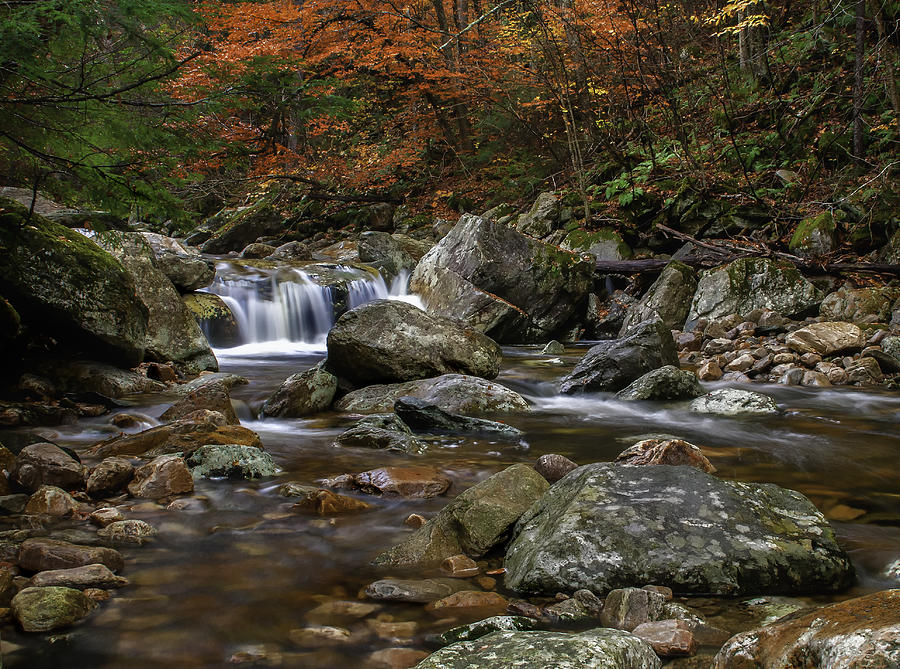 Roaring Brook Photograph - Roaring Brook - Sunderland Vermont Autumn Scene  by Thomas Schoeller