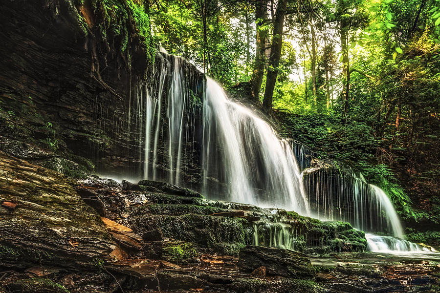 Waterfall Photograph - Roaring Forest Waterfall by Aaron Smith
