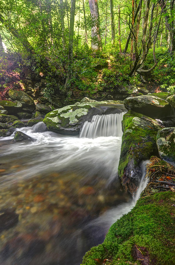 Great Smoky Mountains National Park Photograph - Roaring Fork Motor Nature Trail Waterfall by Mary Anne Baker