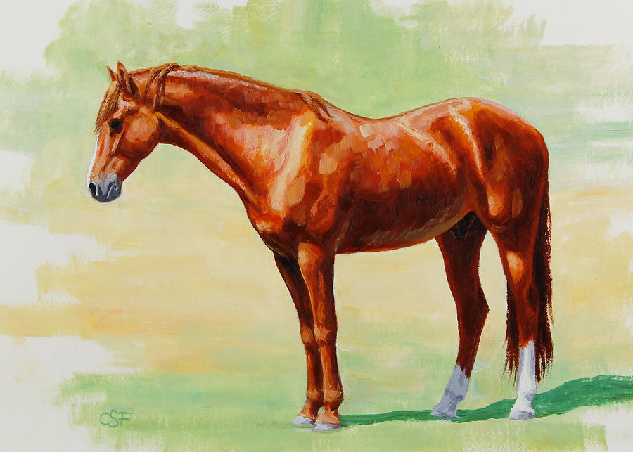 Horse Painting - Roasting Chestnut - Morgan Horse by Crista Forest