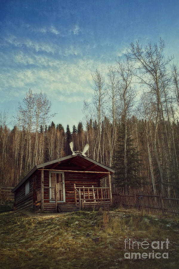 Tourist Attraction Photograph - Robert Service Cabin by Priska Wettstein