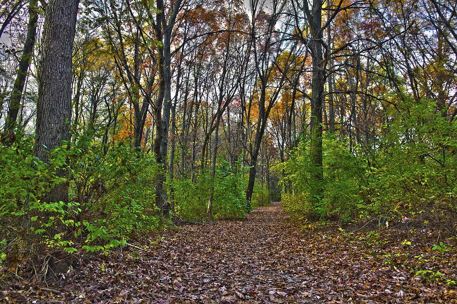 Autumn Photograph - Rock Cut Path 2 by Jim Baker