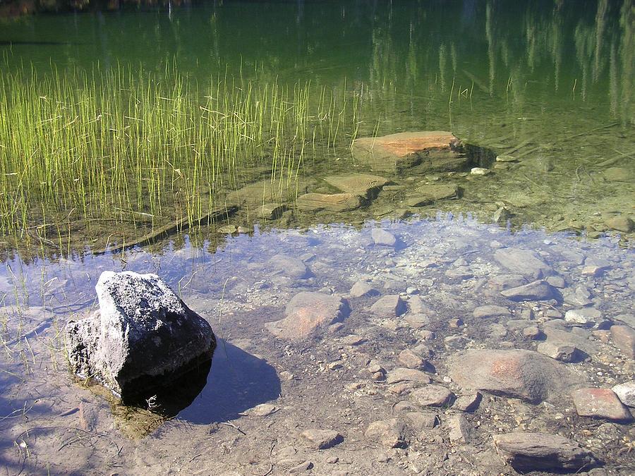 Merritt Lake Photograph - Rock Garden In Green Water by Tom Trimbath