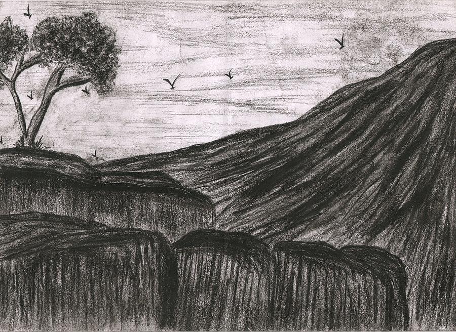 Rock In Still Life Drawing by Syeda Ishrat