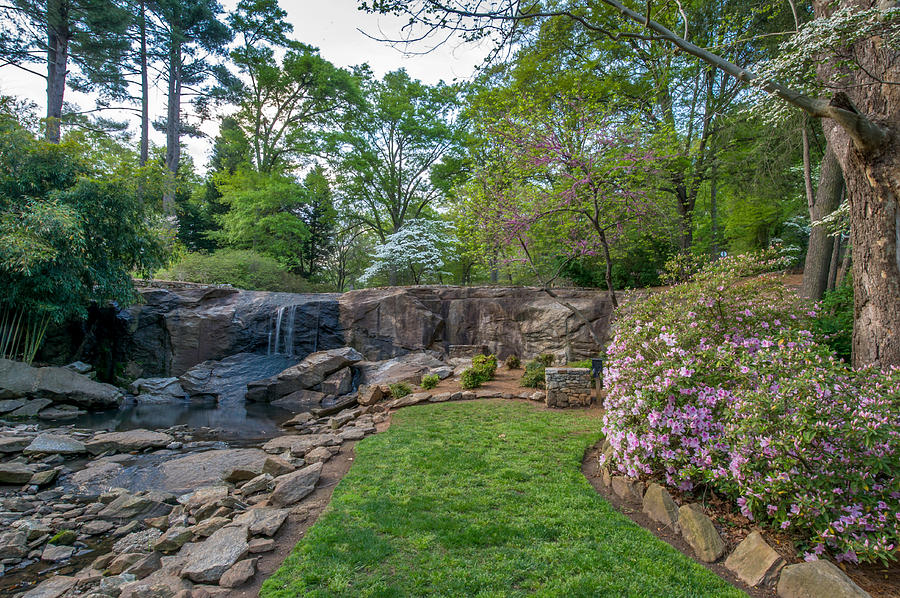 rock quarry garden in cleveland park greenville sc photograph by willie harper