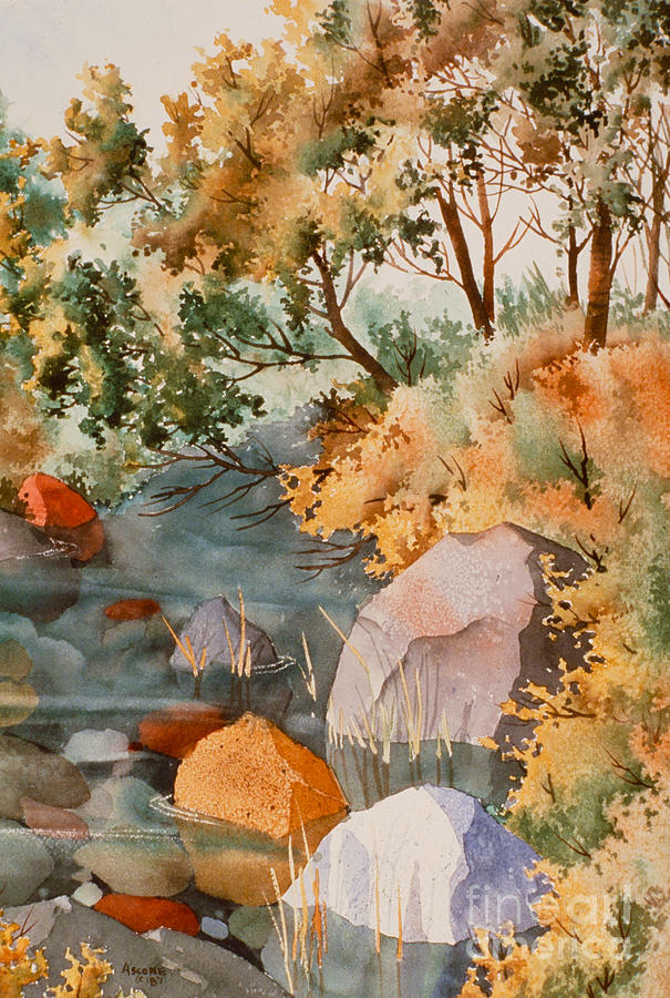 Stream Painting - Rock Reflections by Teresa Ascone