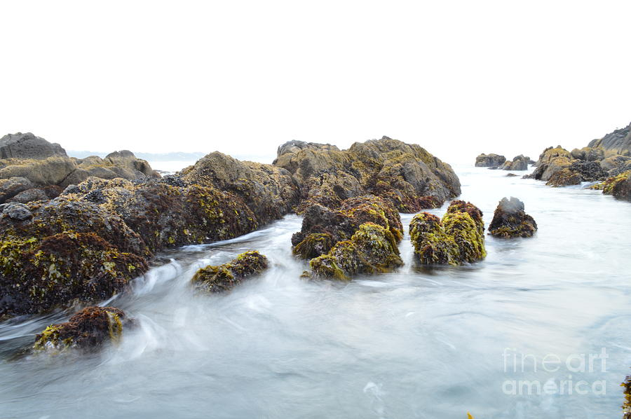 Seascape Photograph - Rock The Seascape by Sheldon Blackwell