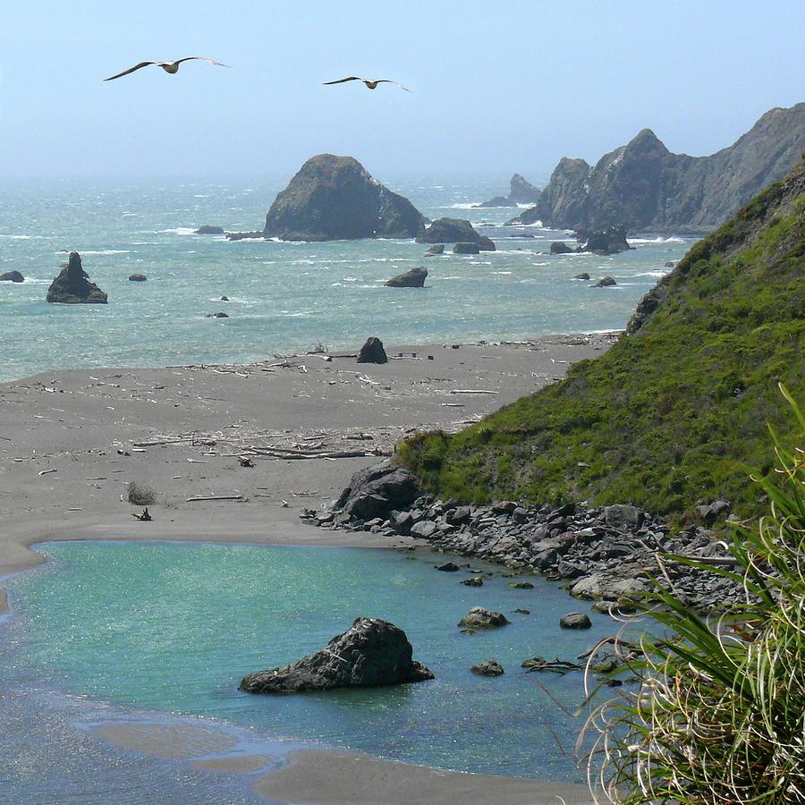 California Photograph - Rock West Coast by Mike McGlothlen