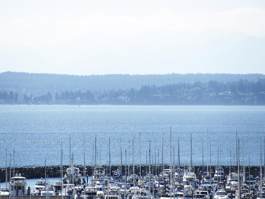 Boat Photograph - Rocking In The Puget Sound by Laura Watts