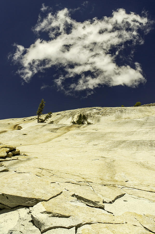 Rocking Skyward-yosemite Series 10 Photograph by David Allen Pierson