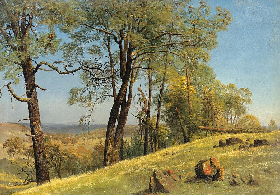 Albert Bierstadt Painting - Rockland County. California by Albert Bierstadt