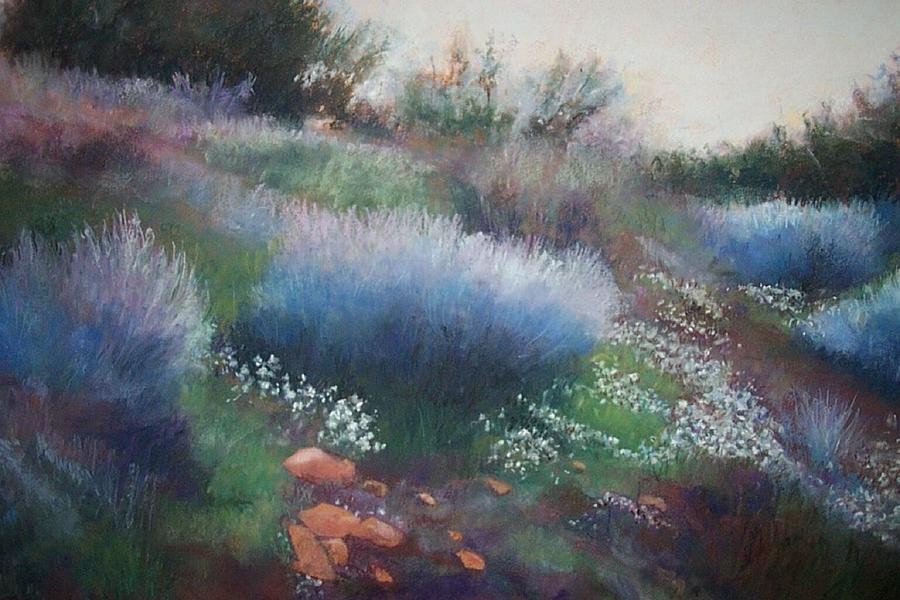Landscape Pastel - Rocks And Blooms by Anita Stoll