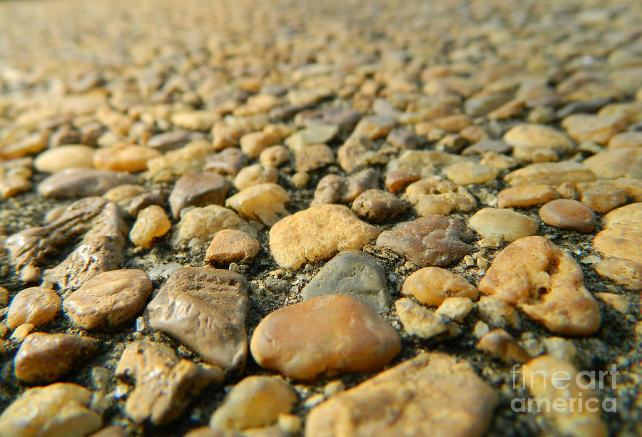 Rock Photograph - Rocks On My Path by Andrea Anderegg