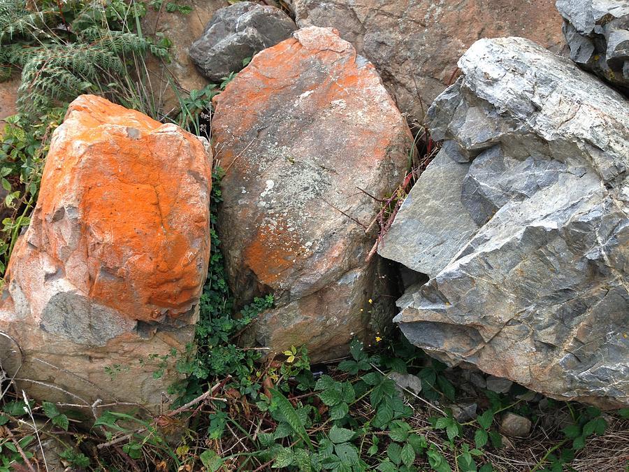 Rocks Photograph - Rocks by Ron Torborg
