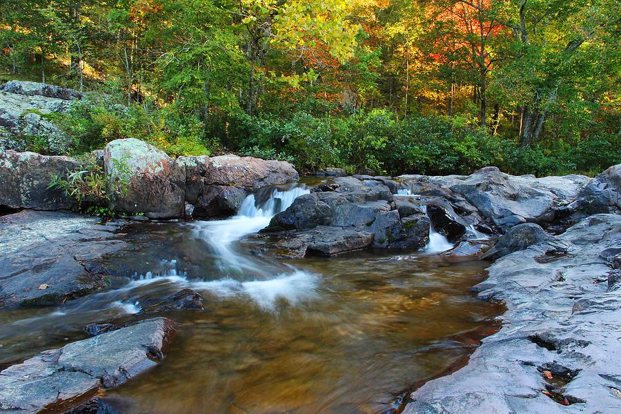 Rocky Creek Photograph - Rocky Creek Above Rocky Falls 1 by Greg Matchick