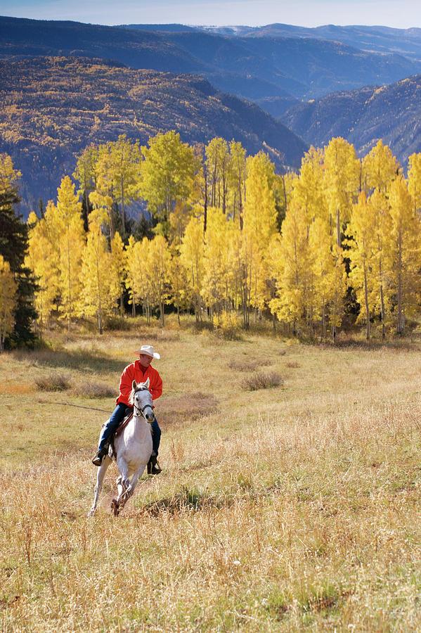 Rocky Mountain Cowboy Photograph by Amygdala imagery