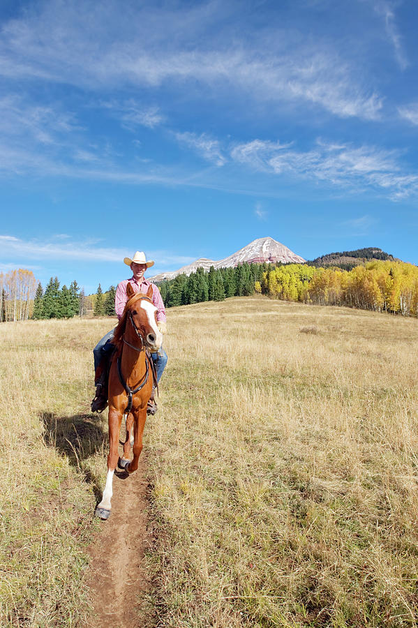 Rocky Mountain Horseback Autumn Photograph by Amygdala imagery