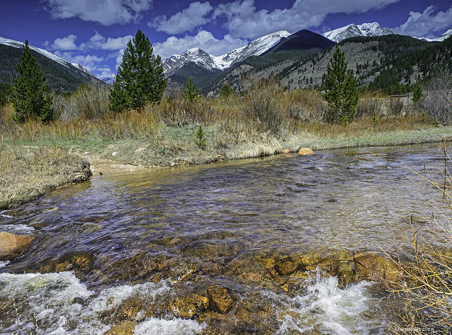 Rockies Photograph - Rocky Mountains by Tom Wilbert