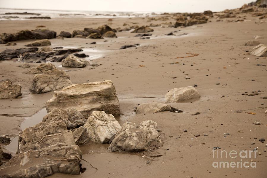 Rocky Shore Photograph - Rocky Shore by Amanda Barcon