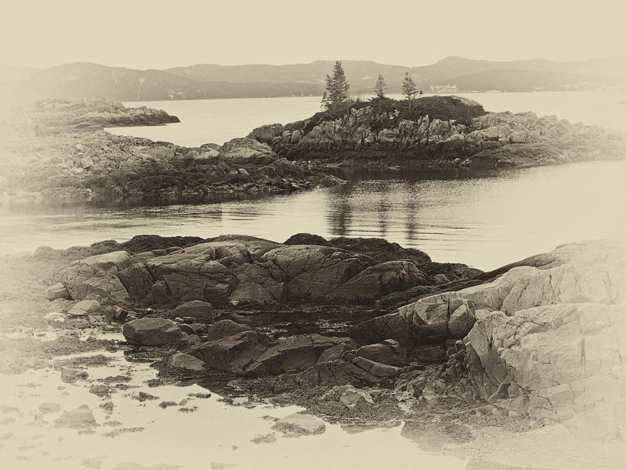 Rocky Shore sepia by Stan Wojtaszek