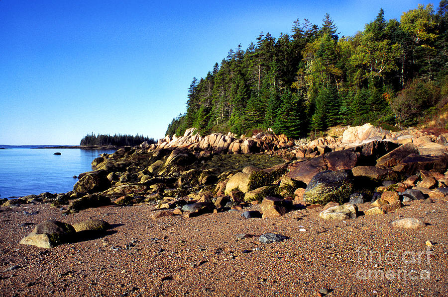 Shoreline Photograph - Rocky Shoreline Deer Isle Maine by Thomas R Fletcher