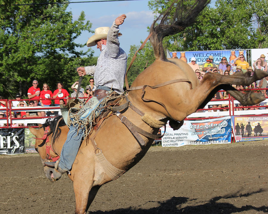 Horse Photograph - Rodeo by Bruce  Morrell