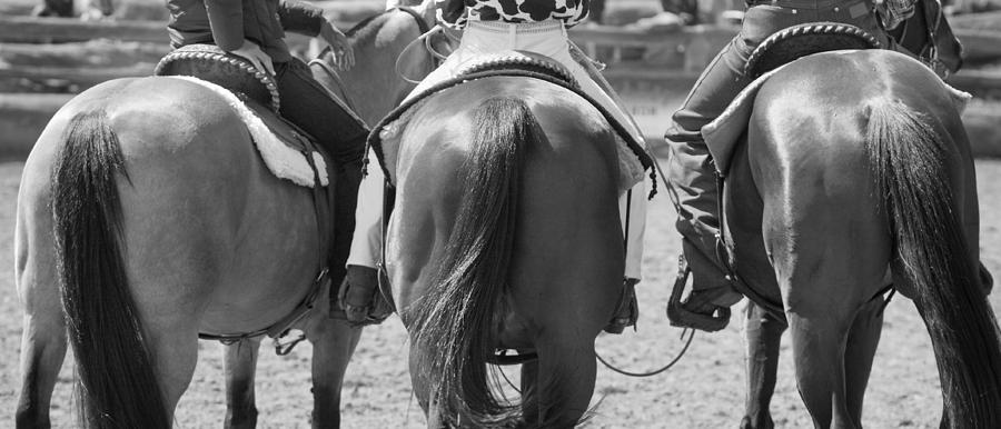 Rodeo Photograph - Rodeo Bums by Michelle Wrighton