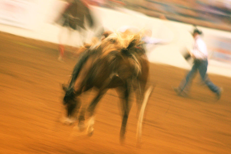 Rodeo Photograph - Rodeo by Paulette Maffucci