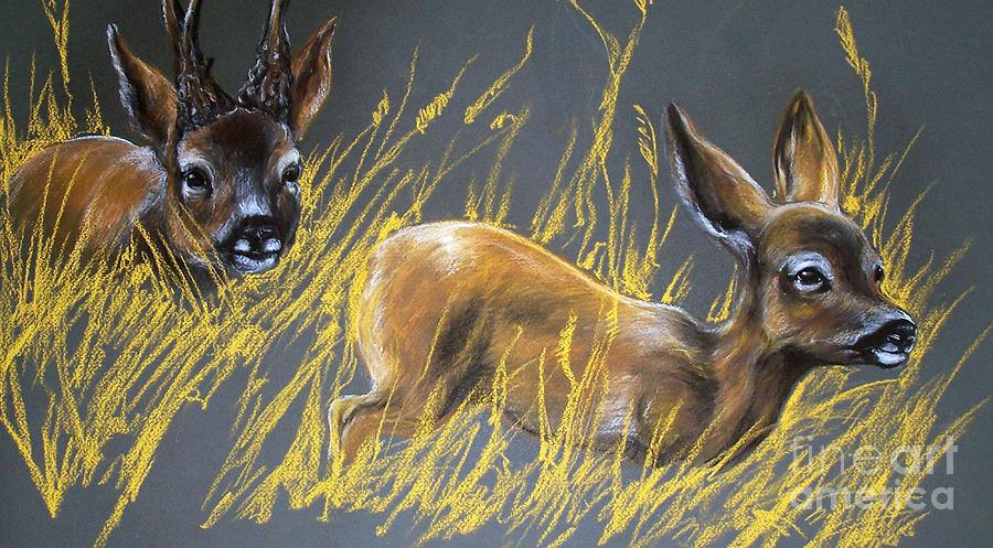 Roe Deer Pastel - Roe Deer by Angel  Tarantella