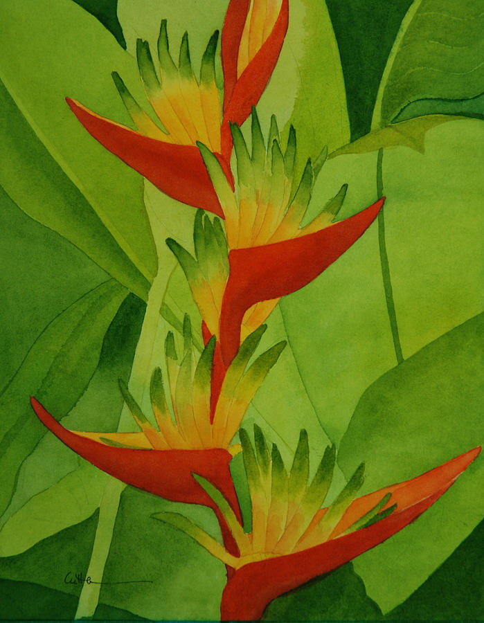 Heliconia Painting - Rojo Sobre Verde by Diane Cutter