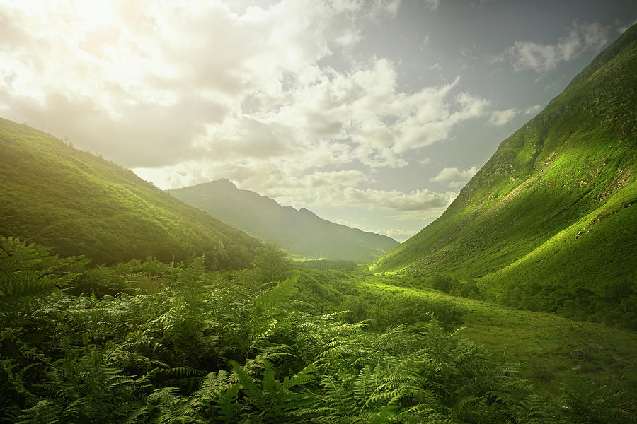 Rolling Green Hills In Remote Landscape Photograph by Chris Clor