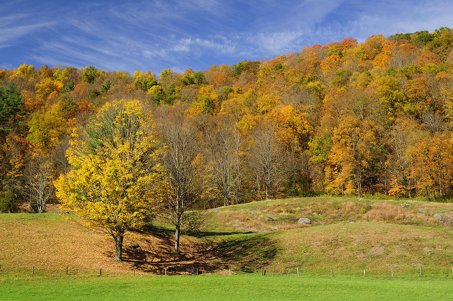 Autumn Photograph - Rolling Hills by Luke Moore