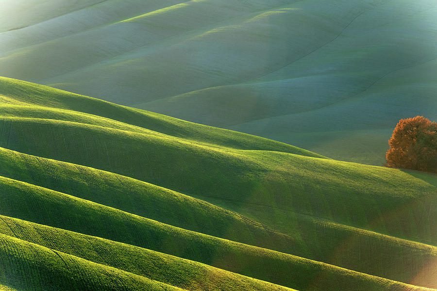Rolling Tuscany Landscape At Evening Photograph by Pavliha