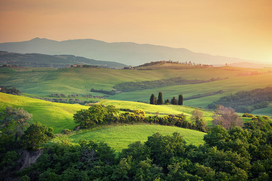 Rolling Tuscany Landscape Photograph by Borchee