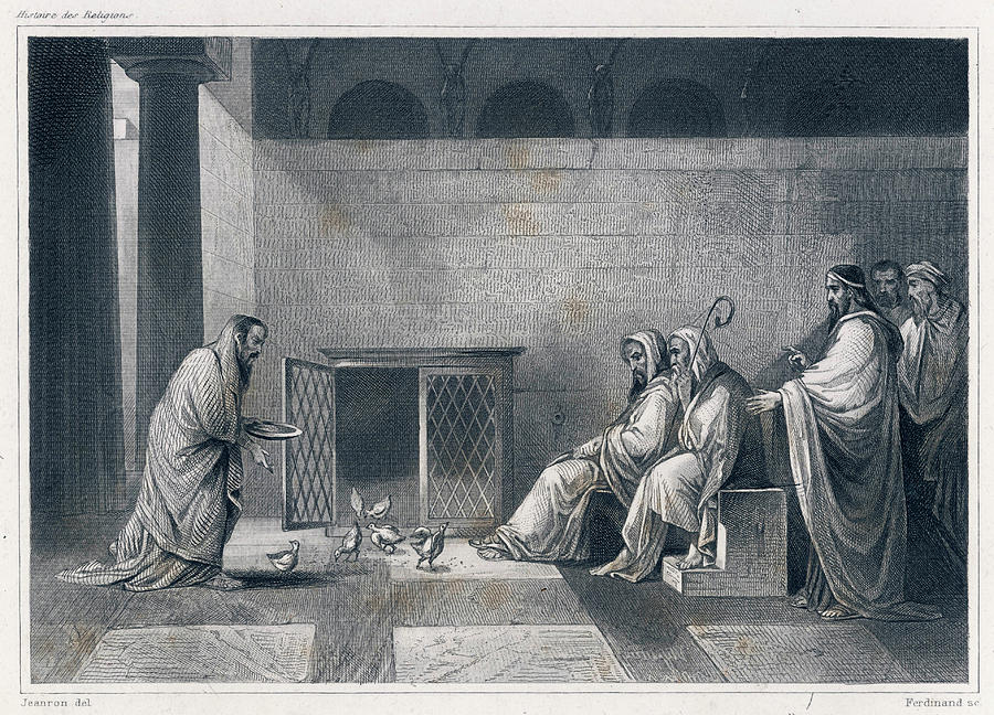 Roman Drawing - Roman Augurs Foretell The  Future by Mary Evans Picture Library