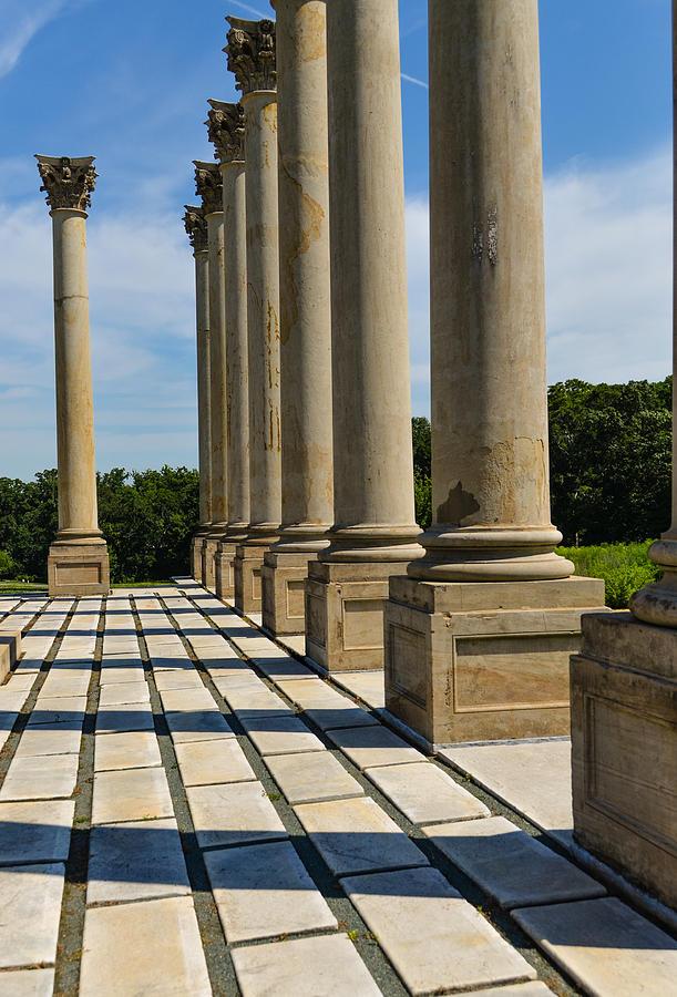 The Elegant Façade : Columns