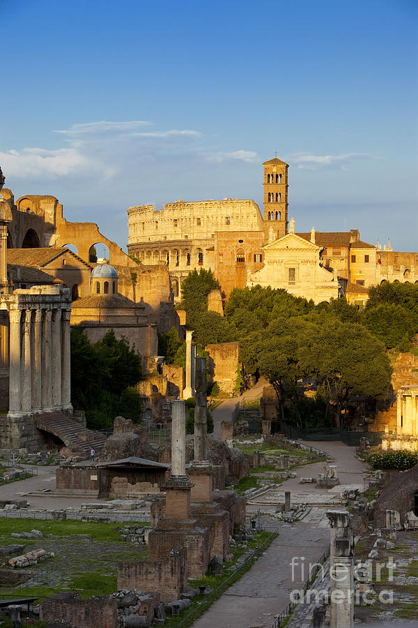Roman Photograph - Roman Forum by Brian Jannsen