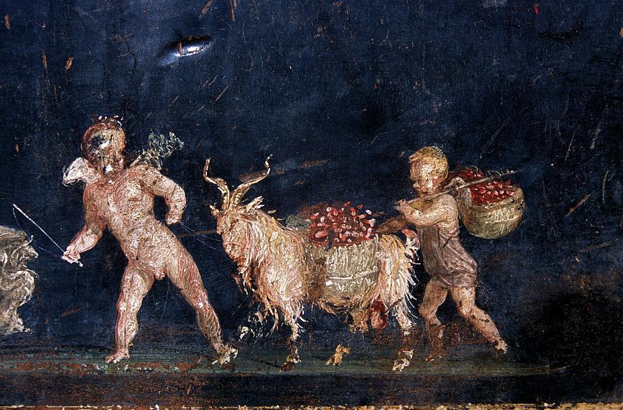 Fresco Photograph - Roman Fresco Showing Flower Dealers by Patrick Landmann/science Photo Library